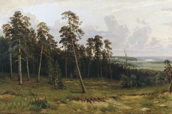 «Опушка леса», 1882 год.