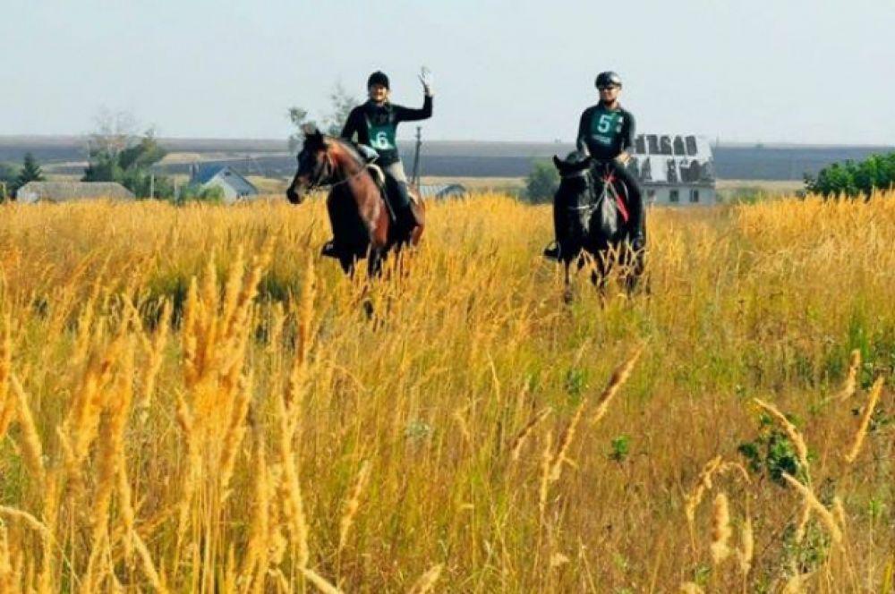 Всех, кто любит лошадей, природу и конный спорт, ждут в КСК  «Ход конём» в Акайском районе.