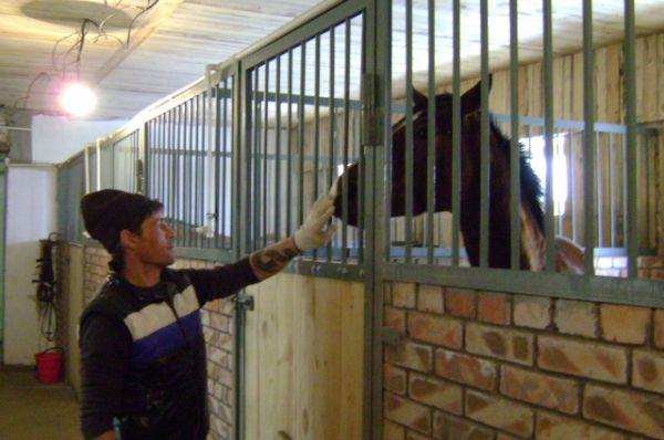За лошадьми оходно ухаживает спортсмен Виталий Денисов.
