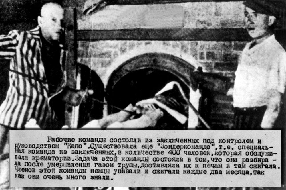 Информационный бюллетень политического управления 1-го Украинского фронта о немецком лагере смерти Освенцим (Аушвиц) Подлинник. Машинописный текст.
