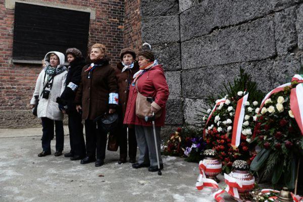Освенцим был самым большим нацистским концентрационным лагерем, занимавшим площадь около 500 га.
