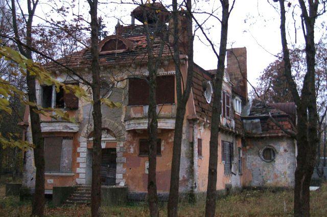 Народное образование в курортном районе санкт петербурга