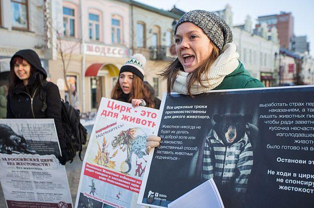 Митинг в защиту животных во Владивостоке.