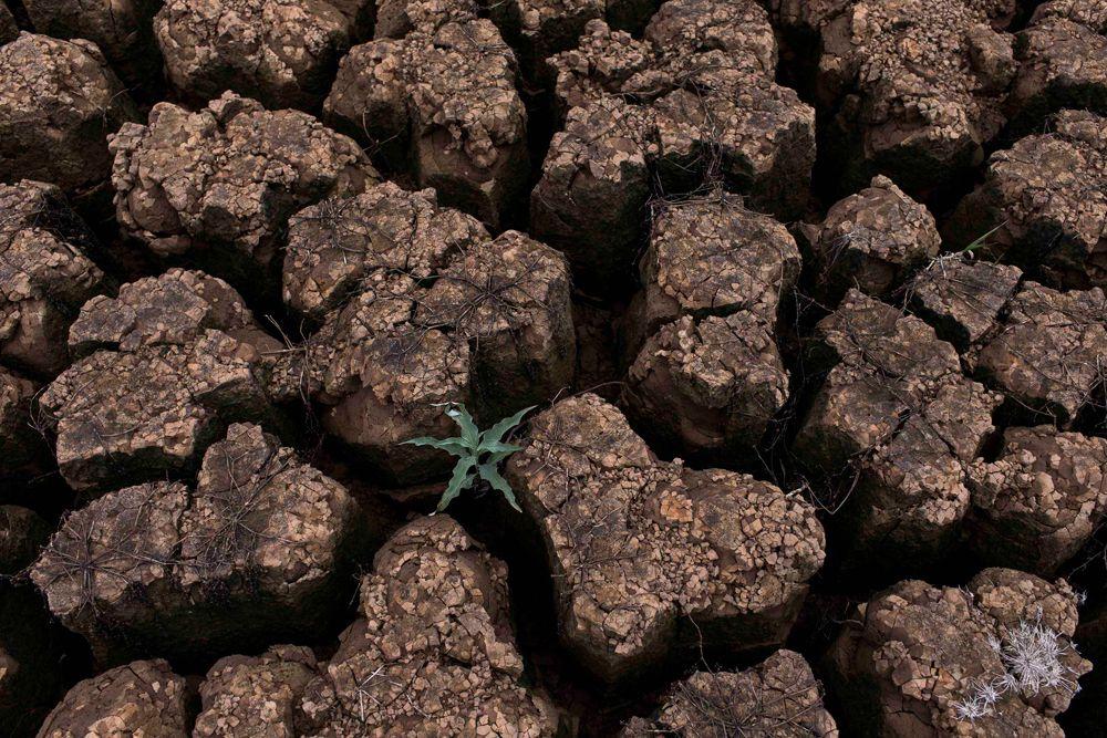 Эксперты прогнозируют, что тяжелая ситуация с водой продлится в Бразилии еще, по меньшей мере, полгода.