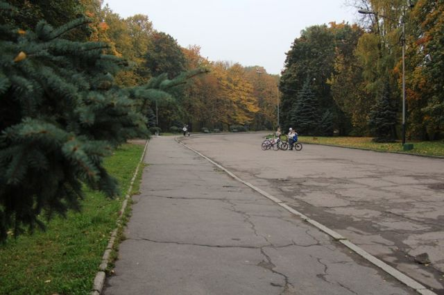 Парк «Южный» ждет реконструкция.