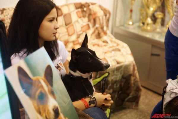 Все желающие могут проконсультироваться у экспертов для выбора той или иной собаки или приобрести необходимые товары для животных.