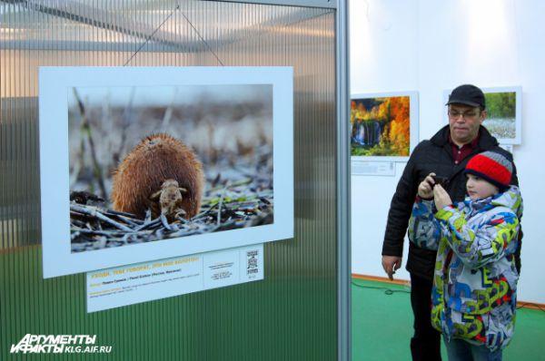 Выставка фото дикой природы будет работать до 21 марта.