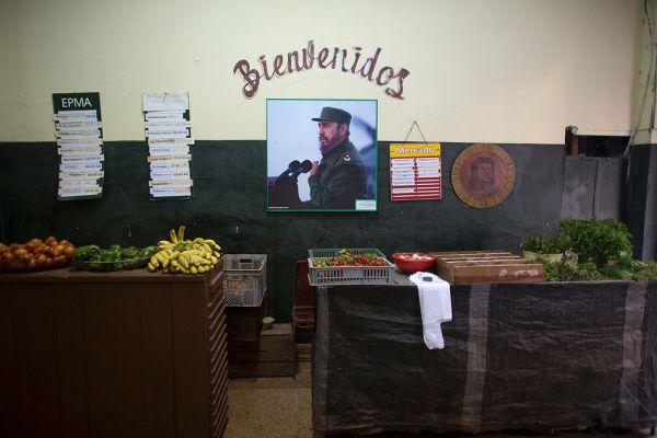 Молодому человеку удалось узнать, что Кастро придерживается строгой диеты, регулярно делает зарядку и является поклонником Russia Today. Примечательно, что тема восстановления отношений Кубы с Америкой, судя по всему, затронута не была.
