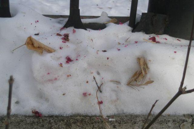 Челябинка сфотографировала подозрительные розовые пятна на улице Блюхера, вокруг детского сада.