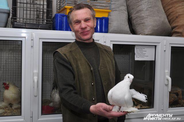 Если вы будете держать голубей, то про отпуск можно забыть