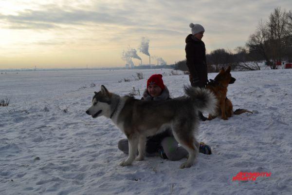 Тренировки выматывают не только собак, но и их хозяев.