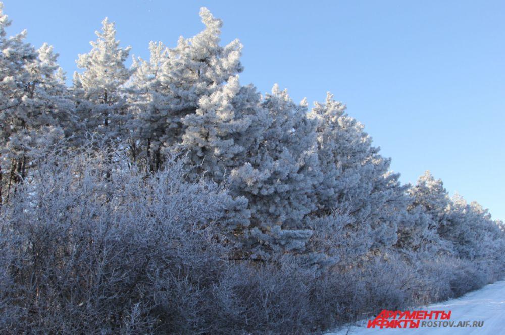 В Ростове снег сошёл две недели назад, а здесь, в 100 км от города-миллионника, зима не собирается сдавать свои полномочия.