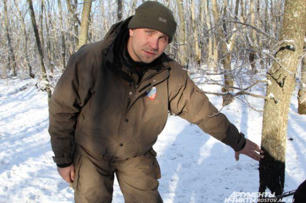 Главный охотовед дирекции государственного природного заказника  «Горненский» Станислав Антипов показывает какого размера кабан чесался о дерево.