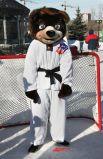 символ предстоящего чемпионата мира по тхэквондо Медведь