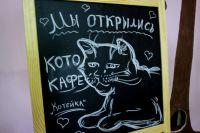 Фанатам домашних животных наверняка понравится котокафе.