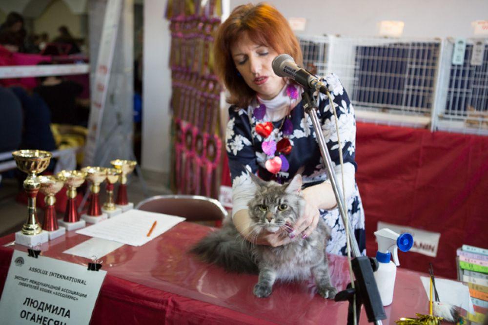 Эксперт из Москвы Людмила Оганесян оценивает конкурсанта.