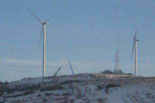 Во Львовской области открыли первую очередь мощной ветровой электростанции