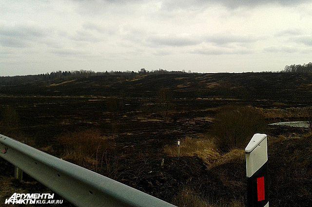 Вдоль трасс - выжженные поля.