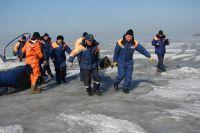 МЧС спасает человека, провалившегося под лёд.
