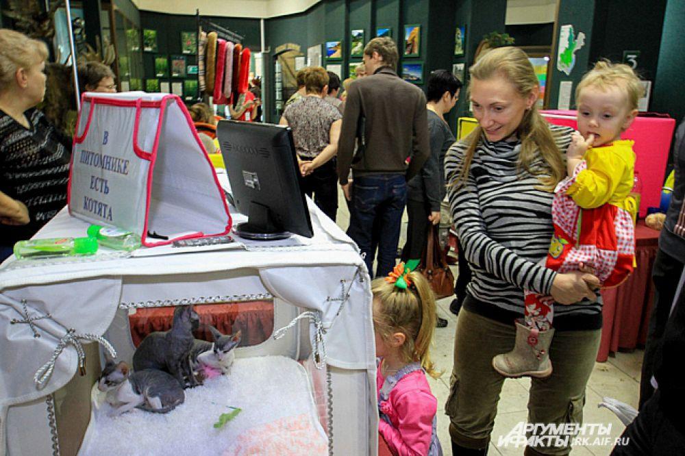Некоторые маленькие иркутяне здесь впервые увидили кошек без шерсти.