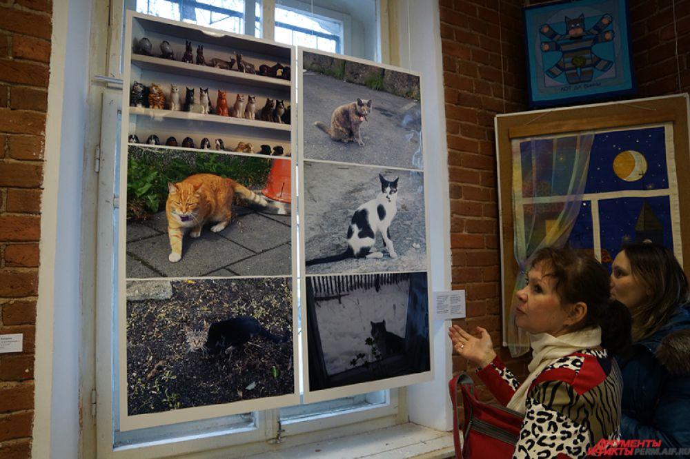 Идея выставки принадлежит фотографу-любителю Оксане Парандей, у которой есть коллекция четверолапых из разных стран мира.