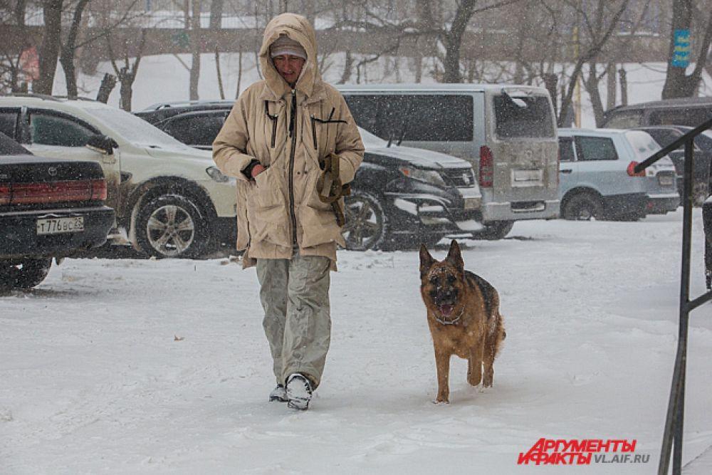 В такую погоду хозяин собаку из дома не выгонит. Приходится идти вместе.