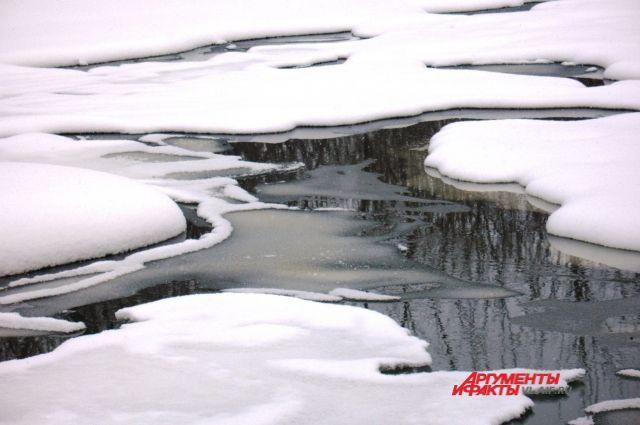 Скоро на реках начнётся движение льда.