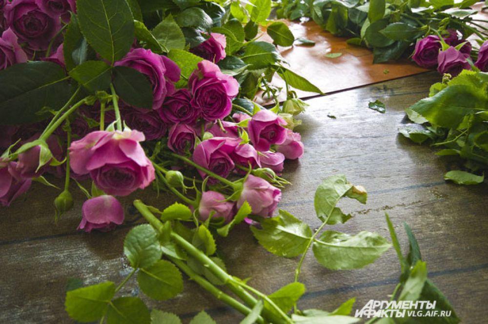 При транспортировке волгоградских роз, в отличие от европейских, не используются консерванты, замораживающие жизненные процессы в цветке.