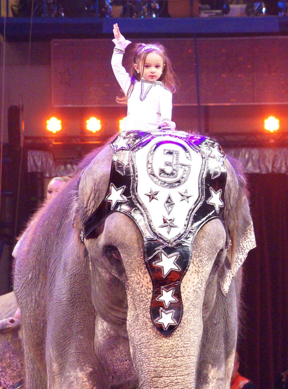 Аттракцион «Слоны» от семьи Гертнер из Германии. На фото самя юная артистка - ей недавно исполнилось 3 года.