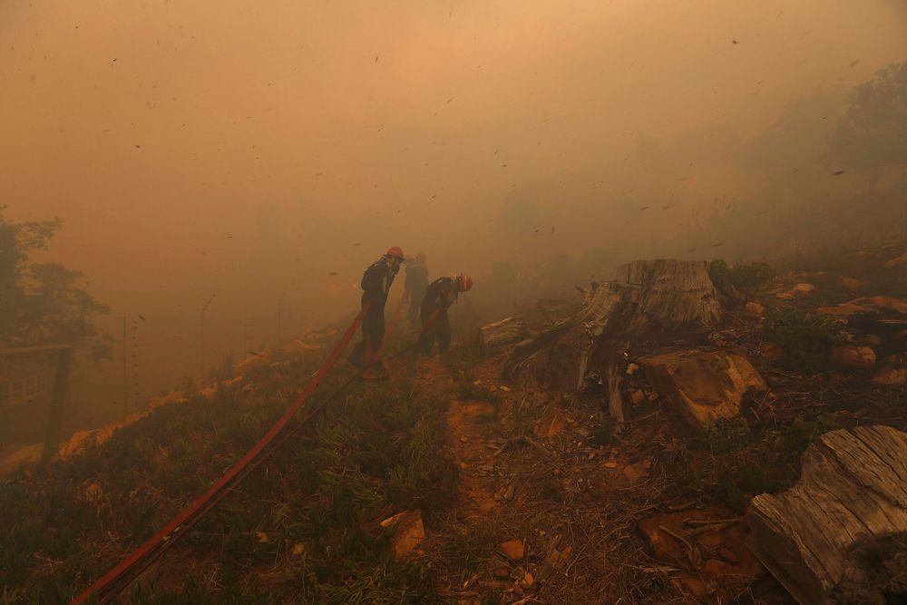 3 марта. Южная Африка. Пожарные во время тушения лесного пожара недалеко от Кейптауна.