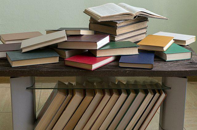 Южноуральцев познакомят с литературой народов региона