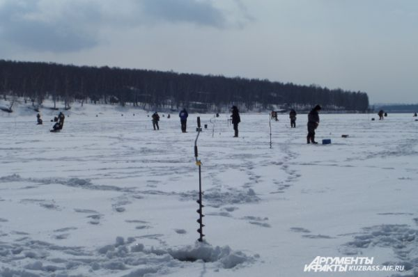 По команде судей через три часа лова все вставали и начинали готовить рыбу к сдаче.