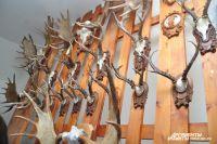 Коллекция рогов.