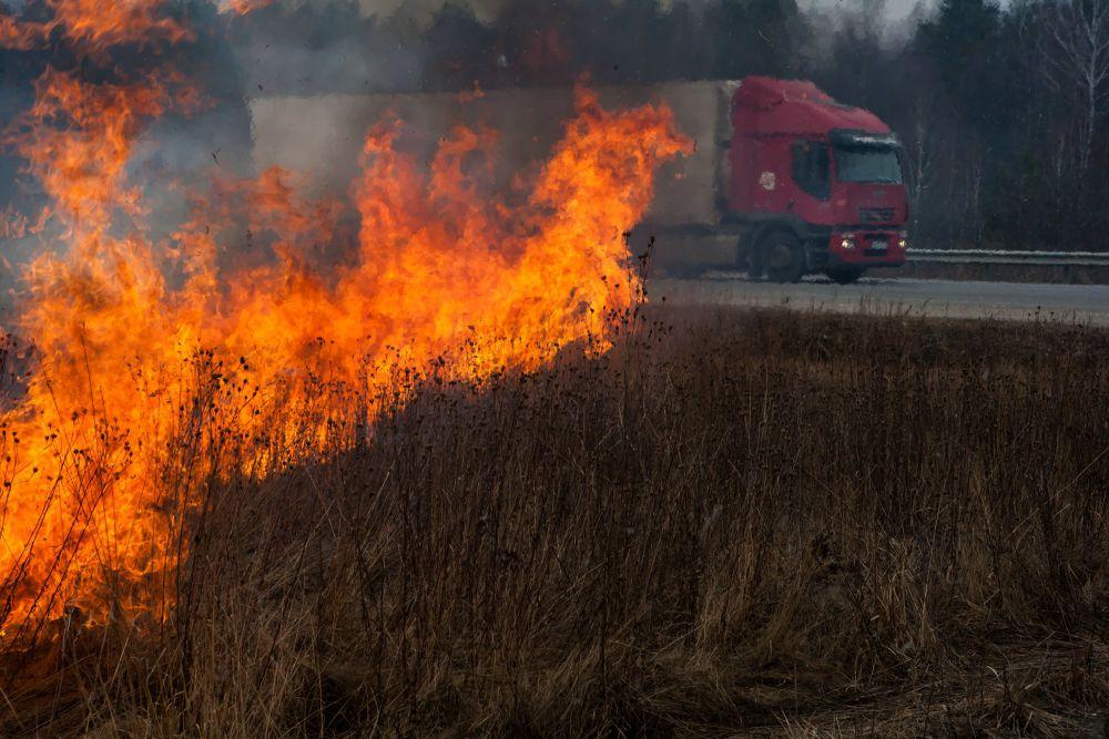 Пожар в Ново-Николаевском Выгоничского района. 21 марта.