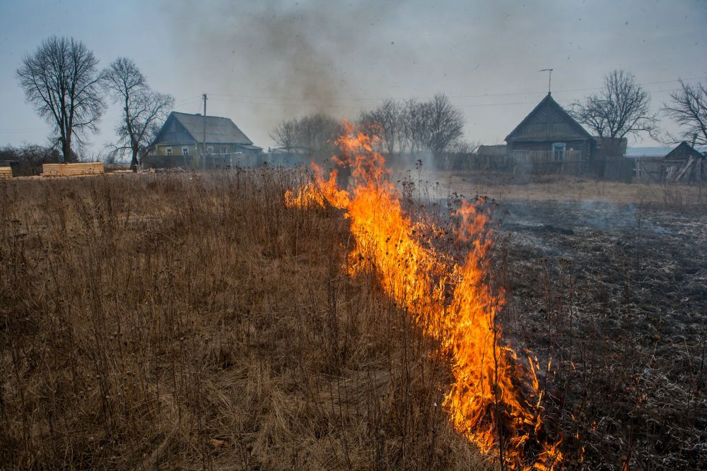 Пожар в Ново-Николаевском Выгоничского района.
