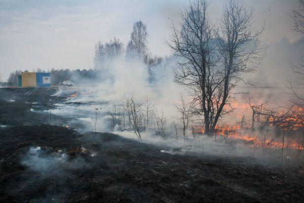 Огонь лишь чудом не уничтожил дома жителей Выгоничского района.