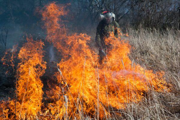 Пожар в деревне Городечня Красногорского района. 23 марта.