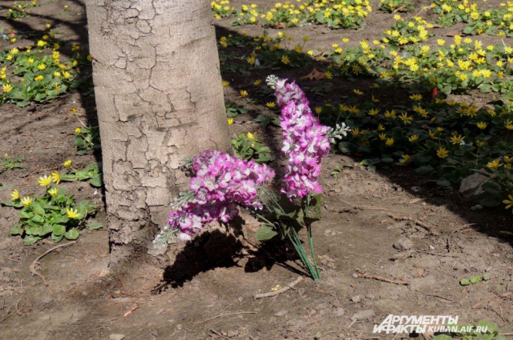 Кто-то из горожан не дождался, когда зацветет сирень и решил воткнуть в землю под окном искусственный цветок.