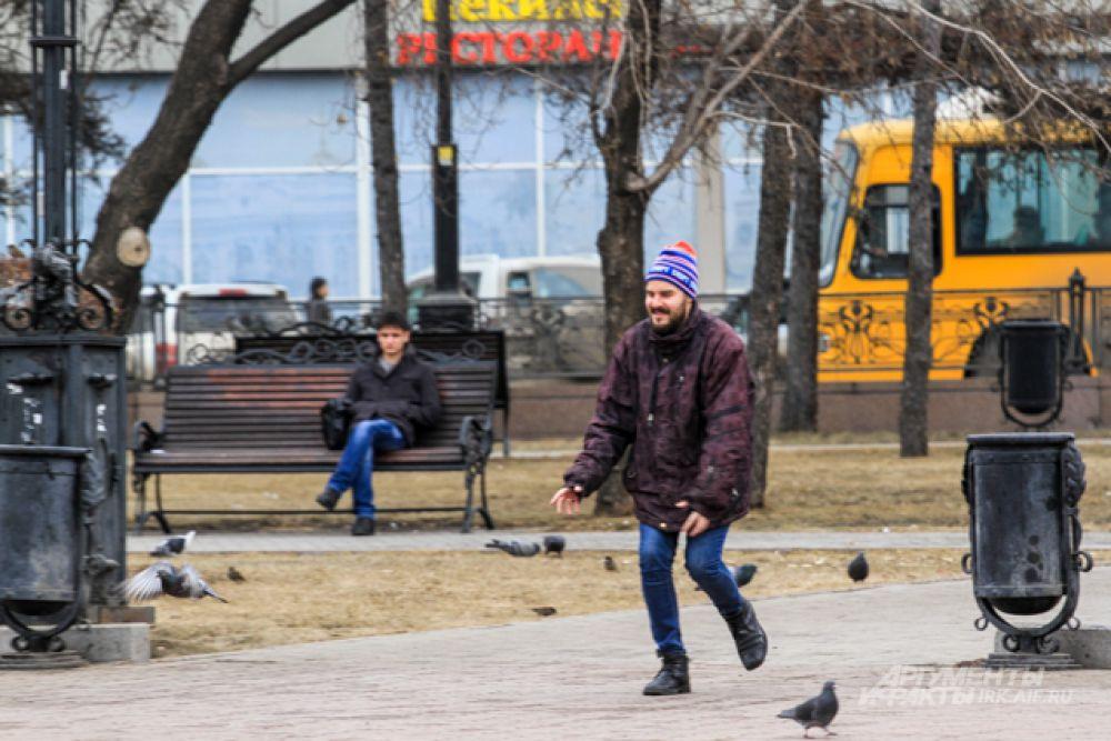 Участники погоняли голубей.