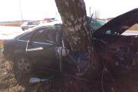 Водитель, после того как его «подрезало» другое авто, не смог справиться с управлением и влетел в дерево.