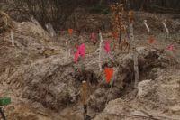 Мины-растяжки в зоне АТО