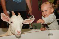 Общение с животными приводит детей в восторг.