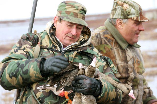 Охота на водоплавающую дичь начнётся в омской области с 25 апреля.