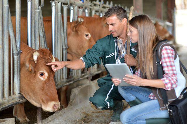 Сегодня - самый подходящий момент для развития фермерства.