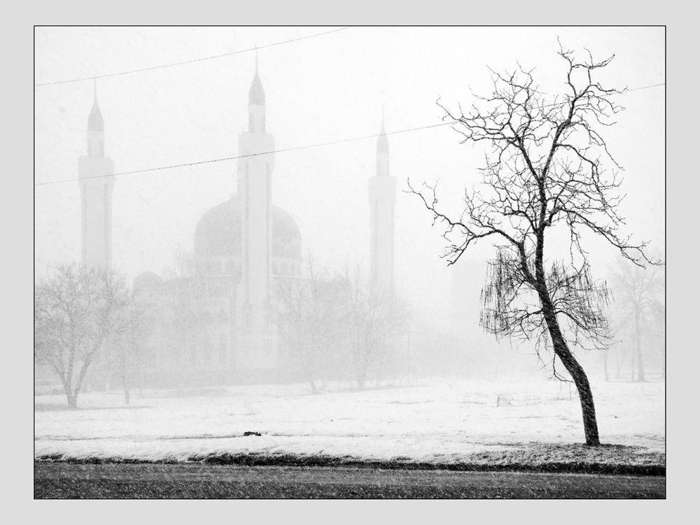 «Снежный минимализм»
