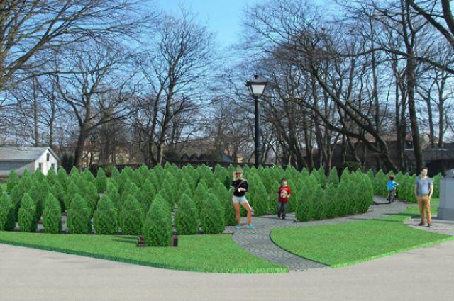 Калининградцам предлагают помочь высадить лабиринт из деревьев.
