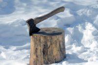 Поводом для убийства стало отсутствие дров.