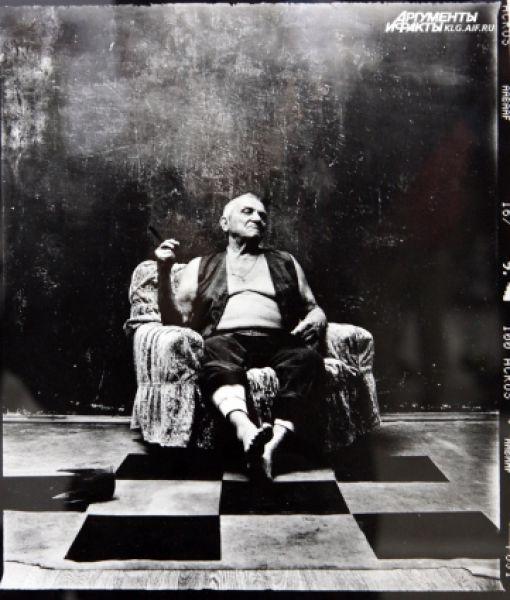 Конкурсная работа «Белый король» фотографа из Белгорода Павла Титовича «Белый король».