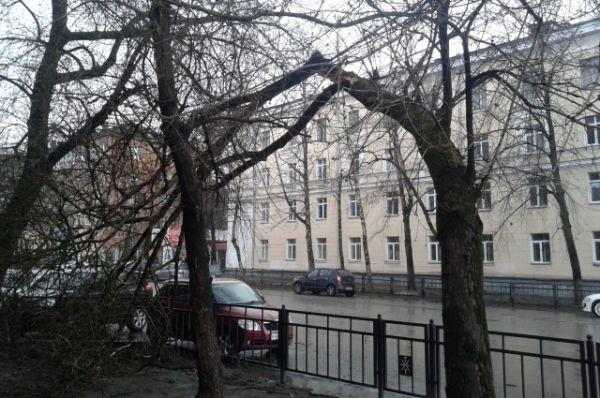 Пересечение улиц Агеева и Ф. Энгельса