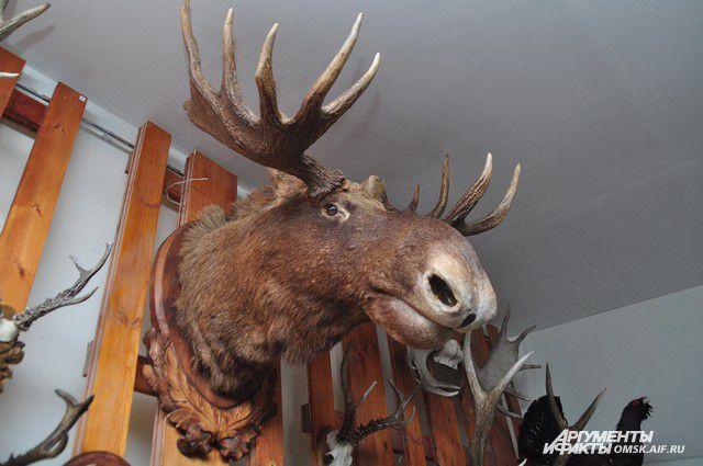 В Новосибирской области задержали браконьера